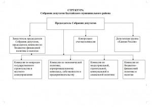 struktura_sobraniya_deputatov_baltajjskogo_munitsipal_nogo_rajjona